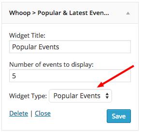 widget-type